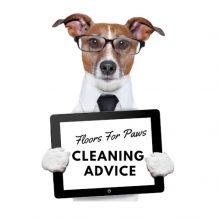 Cleaning and maintaining your Floors For Paws